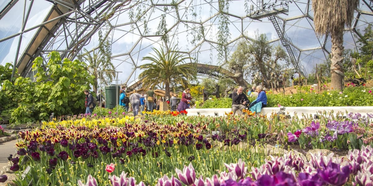 gardens-in-cornwall-falmouth-best-loved-eden-project