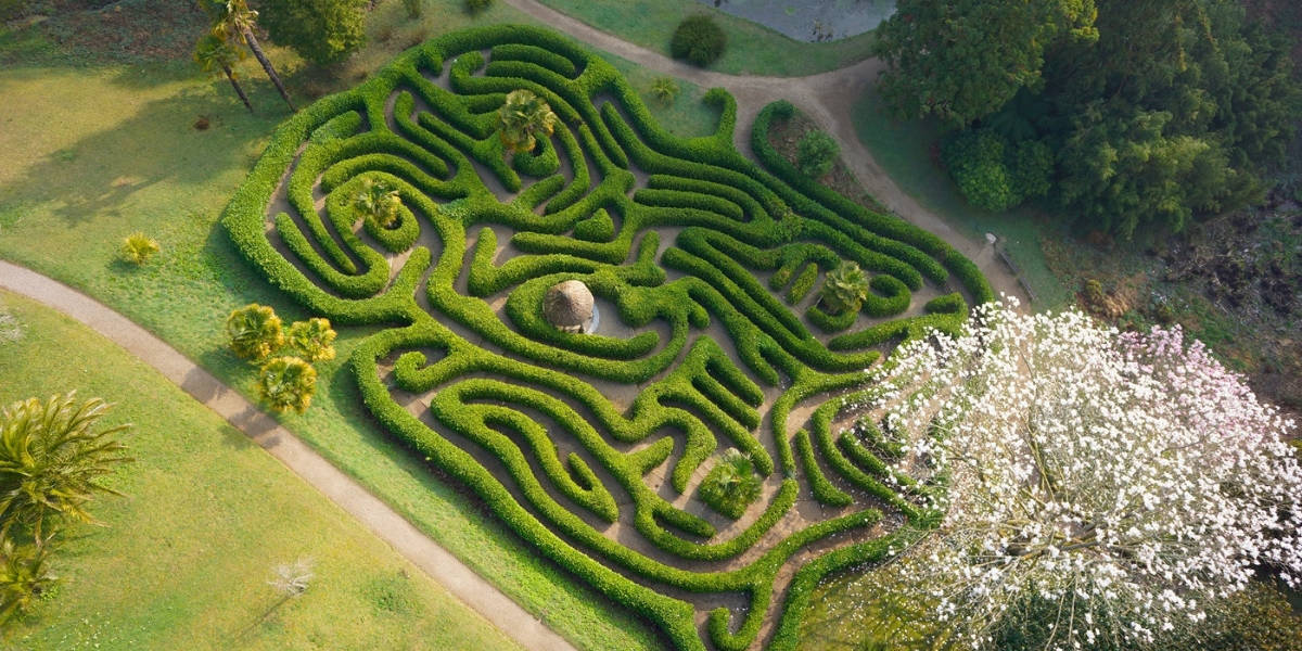 gardens-in-cornwall-falmouth-best-loved-glendurgan