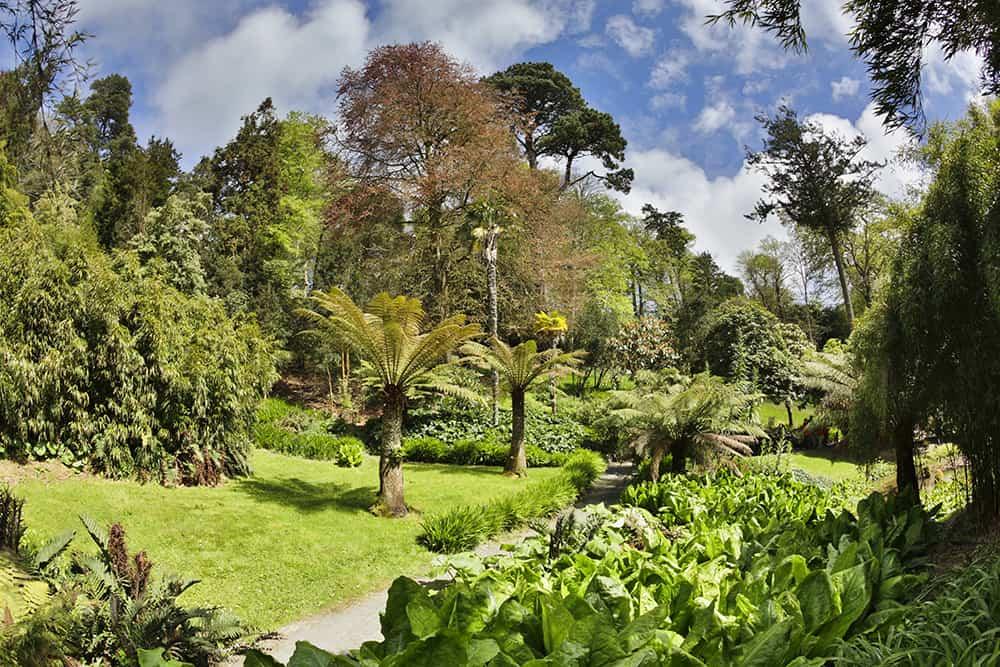trebah-garden-cornwall-falmouth-garden-breaks