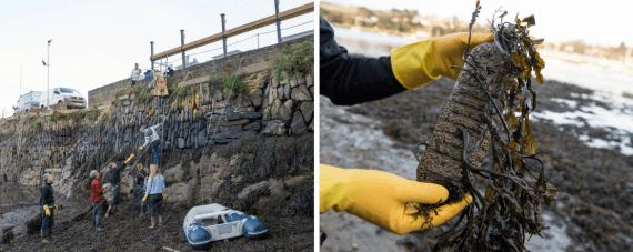 SAS-greenbank-beach-clean-falmouth-cornwall