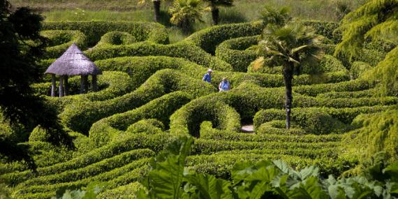 glendurgan-gardens-falmouth