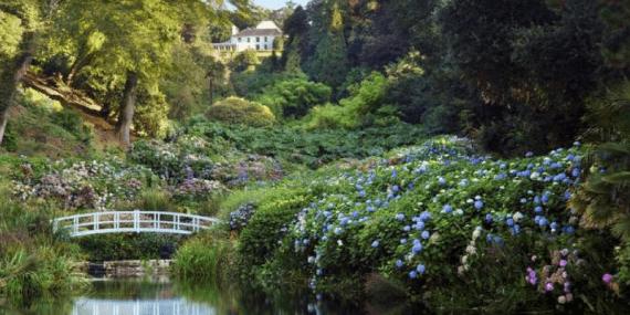 trebah-gardens-falmouth