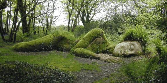 lost-gardens-of-heligan-cornish