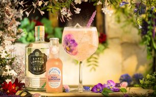 The first ever Falmouth Gin Festival