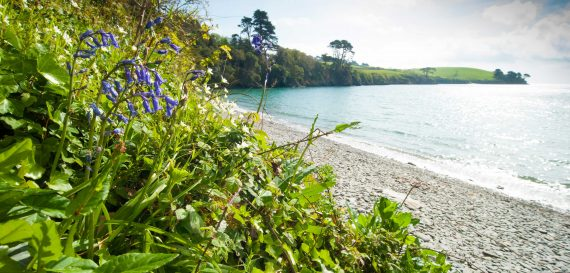Trebah-beach-falmouth-cornwall-beaches