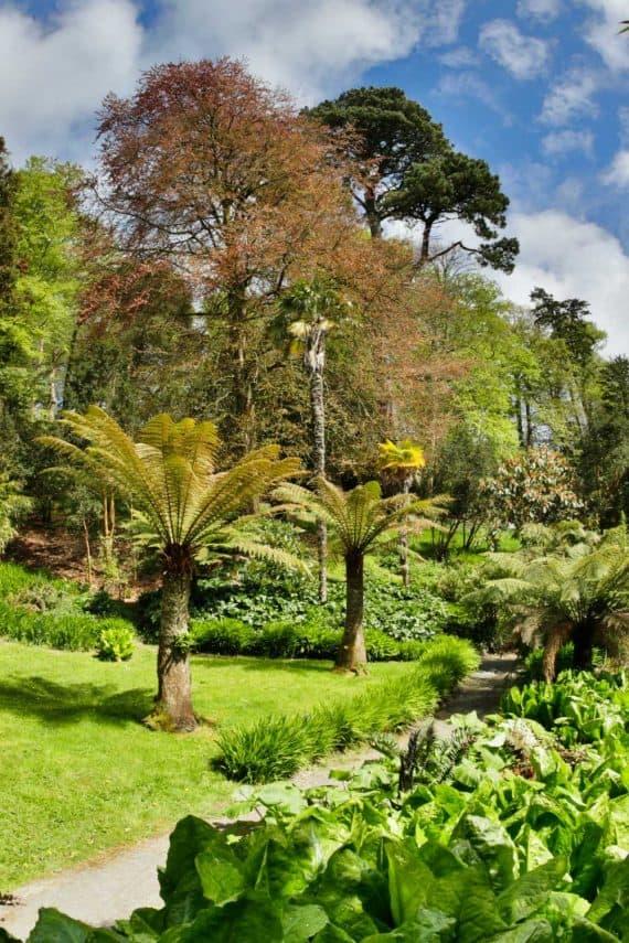 explore-gardens-in-cornwall-garden-break-at-the-greenbank-hotel-adventure