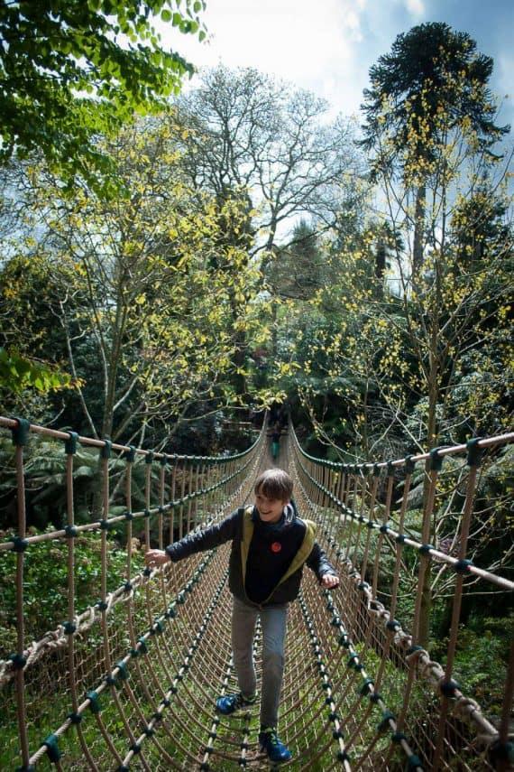 lost-gardens-of-heligan-adventure-rope-bridge-garden-break-greenbank-hotel