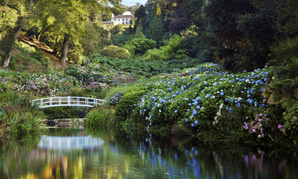 trebah-gardens-explore-greenbank-hotel-garden-break-offer (2)