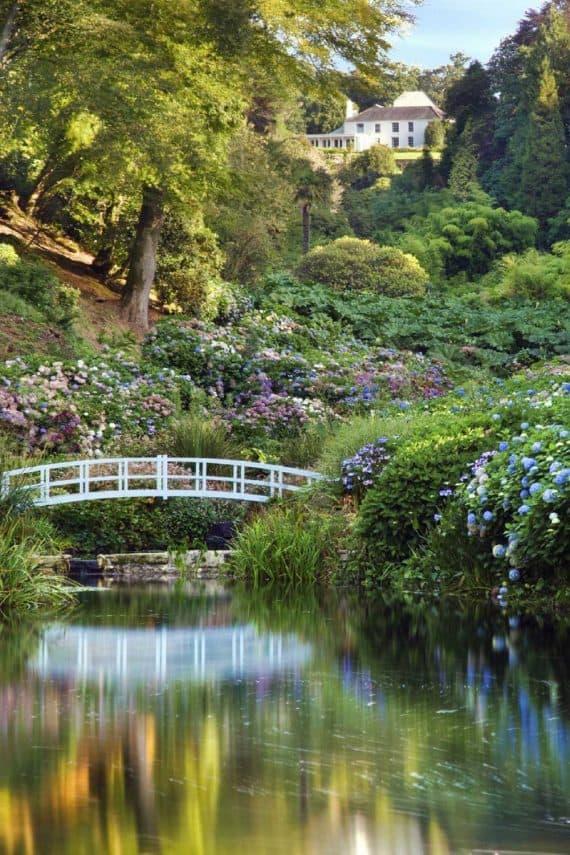trebah-gardens-explore-greenbank-hotel-garden-break-offer