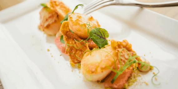 scallop-dish-waters-edge-restaurant-greenbank-hotel-falmouth-bobby
