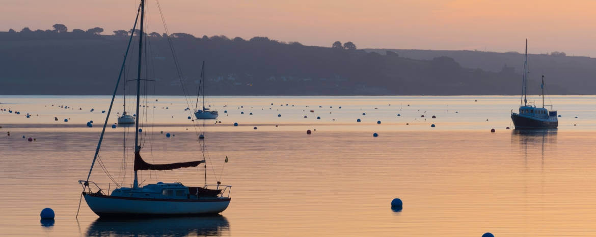 january offers in Cornwall - january jolly