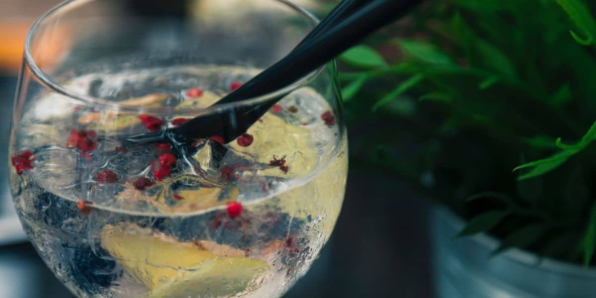 gin-and-prosecco-festival-the-greenbank-falmouth-truro-whats-on-in-june-2019
