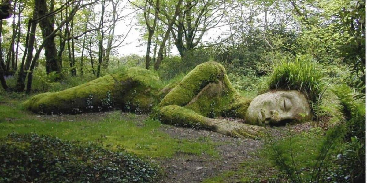 the-lost-gardens-of-heligan-the-greenbank-whats-on-in-june-2019-cornwall-falmouth