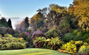 Trebah-gardens-falmouth-best-things-to-do-cornwall