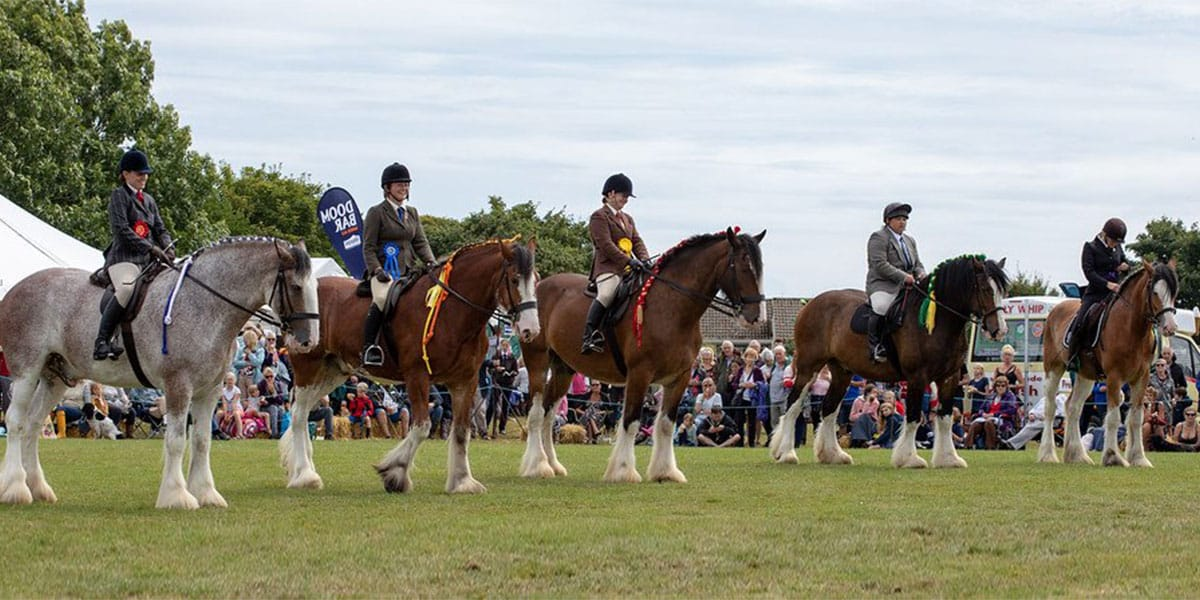 tregony-heavy-horse-show-and-country-fayre-cornwall-whats-on-in-august