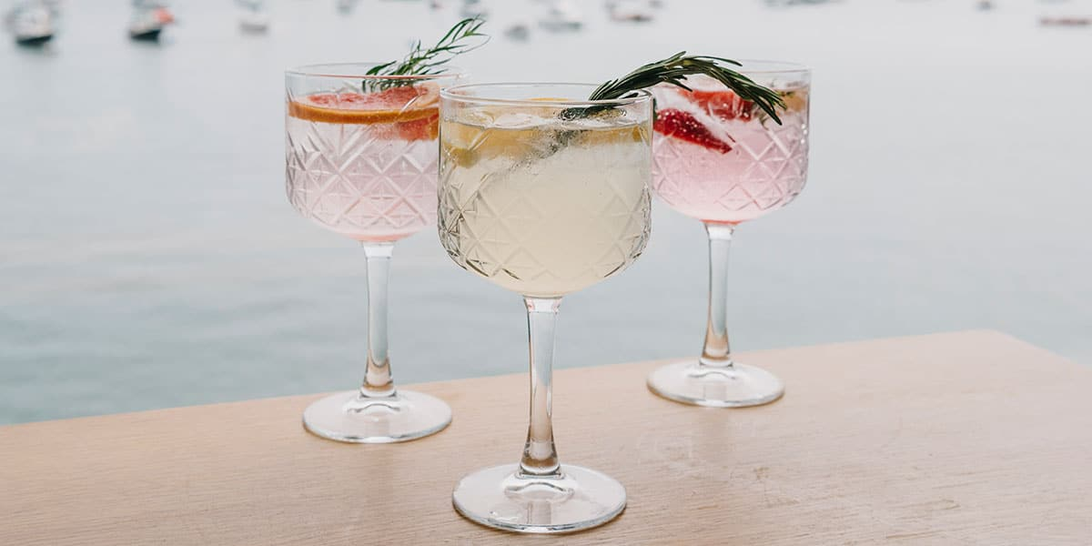 infused-gin-and-tonics-the-greenbank-hotel-falmouth-cornwall