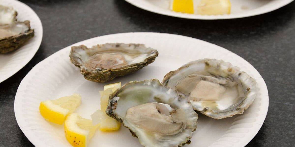 falmouth-oyster-festival-whats-on-in-cornwall-october-2019-the-greenbank-hotel-falmouth