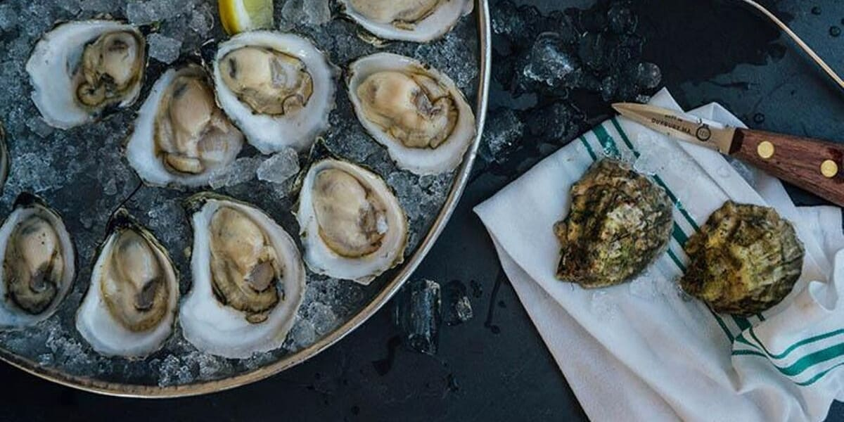 Falmouth Oyster Festival Nick Hodges Scallop Recipe
