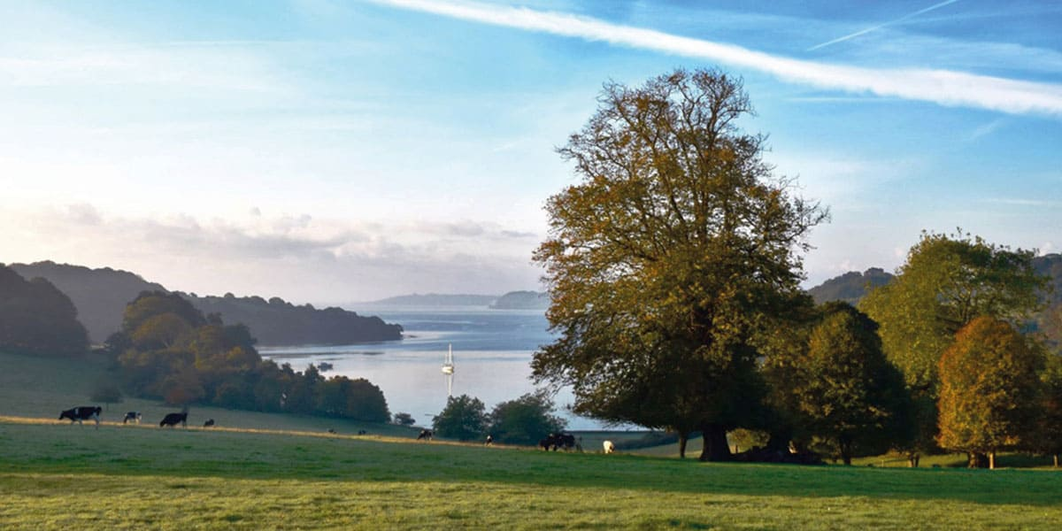 winter-walks-in-cornwall-the-greenbank-hotel-falmouth-cornwall-cornish-escapes-trelissick