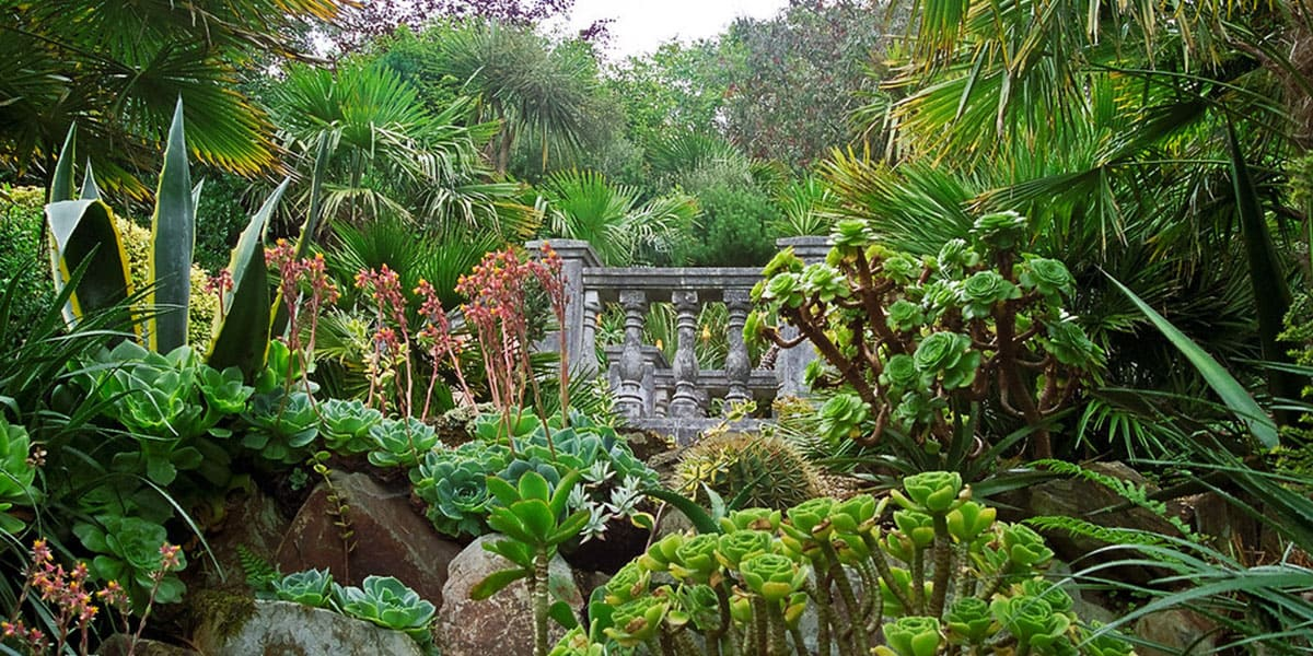 lamorran-gardens-24-hours-in-st-mawes