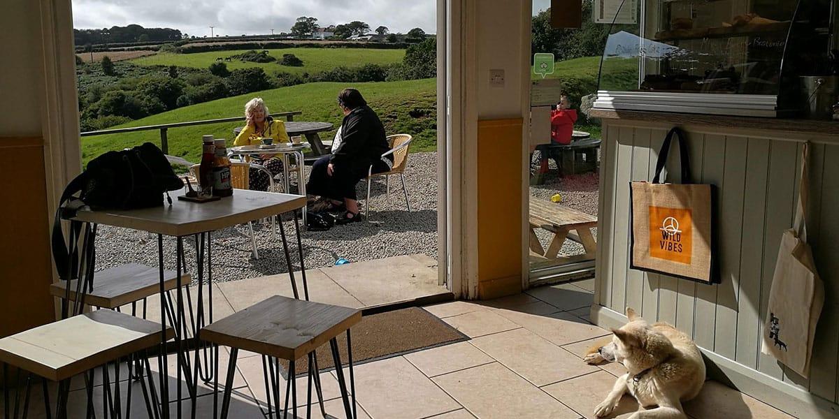 wild-vibes-argal-cornish-walks-with-a-coffee-stop-cornwall-the-greenbank-hotel