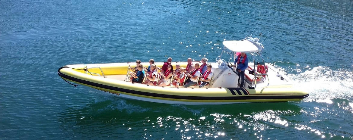 greenbank-hotel-cornwall-what-to-do-in-mevagissey-rib-rides